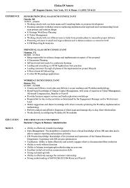 100 Training Consultant Resume Sample Account Manager Job