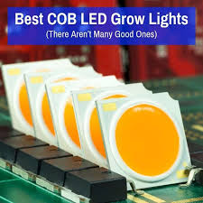 best cob led grow lights there aren t