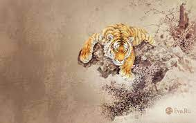 Tiger Abstract wallpapers