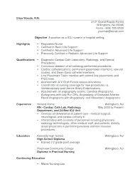 Examples Of Nurse Resumes Enchanting Critical Care Nurse Resume Critical Care Nurse Resume Example Nurse