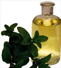 Image result for peppermint oil for hair