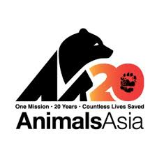 Image result for animals asia