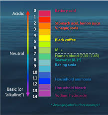 Ph Level Chart The Ph Scale With Some Common Examples
