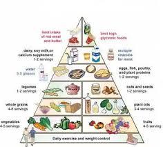 Food Pyramid Diagram Food Guide Pyramid Fatty Liver