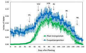 Evaporation Potential Chart Corn Water Use And Evapotranspiration Integrated Crop