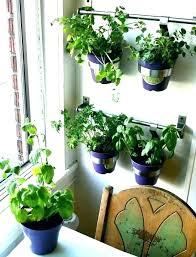 wall herb garden outdoor hanging indoor diy