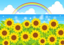 フリーイラスト ひまわりの花と虹の架かる夏の海でアハ体験 Gahag
