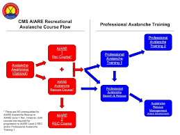 Which Avalanche Training Course Is Right For Me Aiare Flow