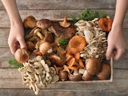 9 reasons mushrooms are the next big superfood