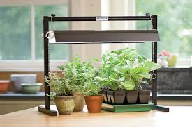 lighting for houseplants. Super Grow Lights For House Plants Fluorescent Light Indoor Lighting Houseplants Y
