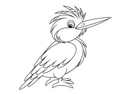 Vogel Kleurplaat 65 Diverse Soortenvogel Kleurplaten Tijd Met