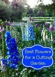 Small Picture The 25 best Flowers for cutting garden ideas on Pinterest