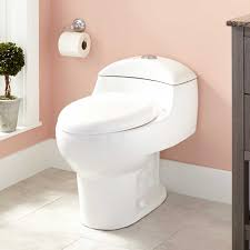 Paladino Dual-Flush One-Piece Elongated Toilet