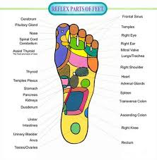 Pressure Points In Your Feet Chart And Videos Foot Chart