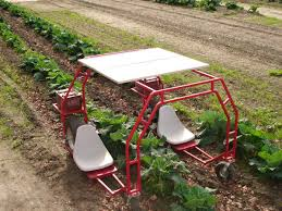 garden cart plans. DIY Garden Projects Cart Plans