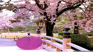 26++ Japan Spring Wallpaper Hd - Venera ...