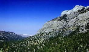 NevadAdventureS Spring Mountains, Mt Charleston, Clark County, Nevada. Hiking, Camping, Fishing, Hunting.