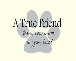 Cute Short Quotes Cool Cute Best Friend Quotes Also Cute Friendship Quote 48 Picture Quote 48