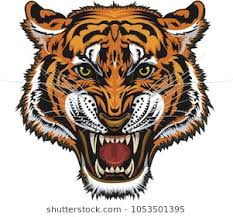 tiger roar tattoo. Delighful Tattoo Saber Toothed Tiger Tattoo For Tiger Roar