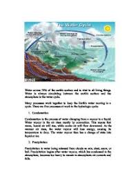 water cycle essay the water cycle essay raylin strickland essay on  essay on water cycle gxart orgessay on water cycle binary optionsessay about water cycle