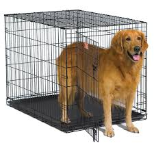 Midwest iCrate Wire Dog Crate with Pan and Divider - Free Shipping On  Orders Over $45 - Overstock.com - 15524041