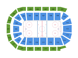 Toledo Walleye Tickets At Huntington Center On January 25 2020 At 7 15 Pm