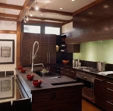 ... Modern Asian kitchen design engulfed in ample dark wood