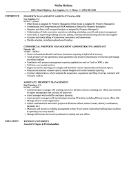 Resume Examples Property Management Assistant Resume Samples