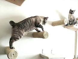 cat furniture best cat shelves images on cat furniture pets and floating sisal cat post cat