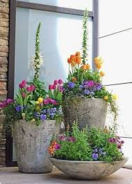 container gardening flowers