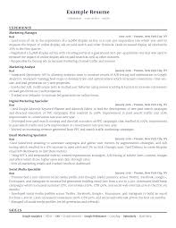 Resume Details Example Examples Of Resumes