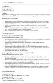 sample resume vocational rehabilitation counselor resume format - Sample Vocational  Rehabilitation Counselor Resume