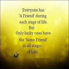 Quotes About The Importance Of Friendship Inspiration Quotes About The Importance Of Friendship Enchanting Pictures Value