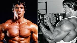 arnold schwarzenegger s workout routine to bee mr olympia is the stuff of nightmares
