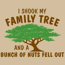 Funny Quotes About Family Impressive 48 Short Funny Quotes And Sayings With Pictures