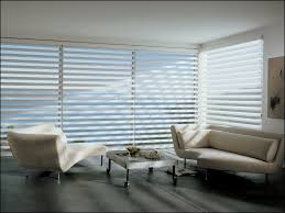 Window Blinds : Wonderful Living Room Picture Window Treatments ...