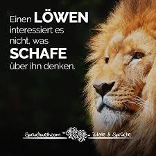 Einen Löwen Interessiert Es Nicht Was Schafe über Ihn Denken