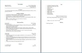 Security Officer Resume Objective Resume Layout Com