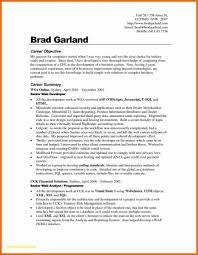 Resume Job Objective Example Statement Examples Of Resumes Career