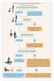 Functional Movement Assessment Musculoskeletal