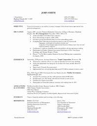 Security Resume Sample 100 Inspirational Security Officer Resume group counselor cover 38
