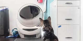 the best automatic cat litter box but we don t recommend it