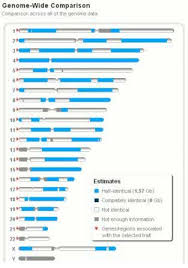Dna Chart For Half Siblings How 23andmes Relative Finder Uses Dna To Confirm Kinship
