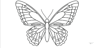 Butterfly Patterns Impressive Butterfly Template Example More Patterns To Trace Helpcodeco