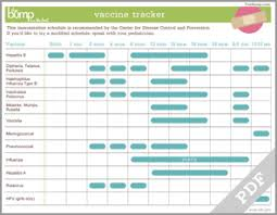 Infant Shot Record Chart Tool Vaccine Tracker