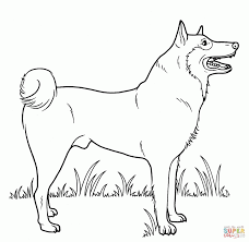 color pages dogs. Exellent Color Innovative Dog Color Sheets Dogs Coloring Pages And