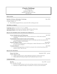 Information Technology Resume Template Ideas Example Technical Cover