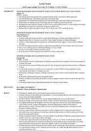 Business Development Executive Resume Senior Business Development Executive Resume Samples Velvet Jobs 6