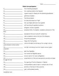 essay topics my pet to talking