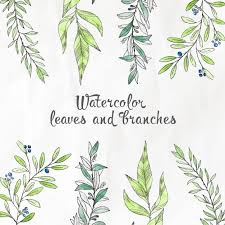 tree branch with leaves vector. watercolor leaves and branches free vector tree branch with h